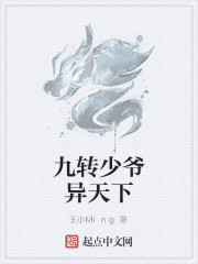 《九转少爷异天下》作者:王小Ming