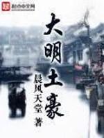 《大明土豪》作者:晨风天堂