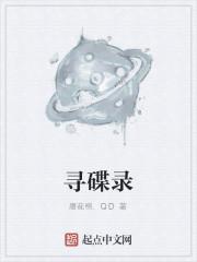 《寻碟录》作者:唐花棉.QD