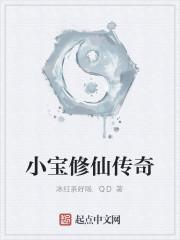 《小宝修仙传奇》作者:冰红茶好喝.QD