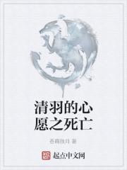 《清羽的心愿之死亡》作者:苍雨狼月