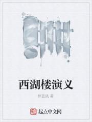 《西湖楼演义》作者:醉蓝风