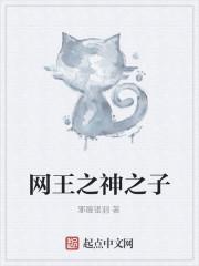 《网王之神之子》作者:邪瞳银羽