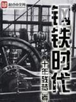 《钢铁时代》作者:十年残梦