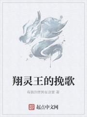 《翔灵王的挽歌》作者:有我的世界在这里