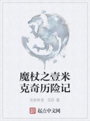《魔杖之壹米克奇历险记》作者:文若彬全.QD