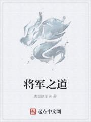《将军之道》作者:唐懿默示录