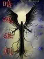 《暗魂法则》作者:风之亦