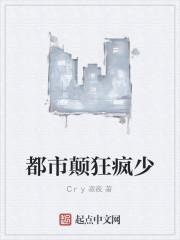 《都市颠狂疯少》作者:Cry寂夜