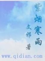《紫烟寒雨》作者:文邪