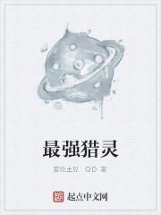 《最强猎灵》作者:爱吃土豆.QD