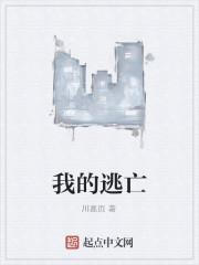 《我的逃亡》作者:川嘉页