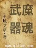 《武魔器魂》作者:王城艾草