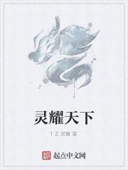 《灵耀天下》作者:12灵翼