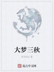 《大梦三秋》作者:龙文风云
