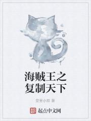 《海贼王之复制天下》作者:皇室小猫