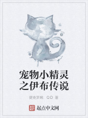 《宠物小精灵之伊布传说》作者:捷克罗姆.QD