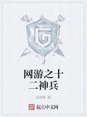 《网游之十二神兵》作者:吉加美