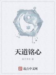 《天道铭心》作者:金子木生