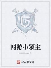 《网游小领主》作者:天光破凌云