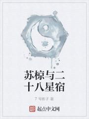 《苏椋与二十八星宿》作者:7号影子