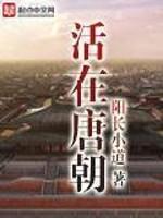 《活在唐朝》作者:阳长小道