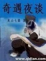《奇遇夜谈》作者:龙山七鼎