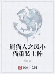 《熊猫人之风小猫重装上阵》作者:天淼