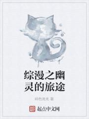 《综漫之幽灵的旅途》作者:绯色流光