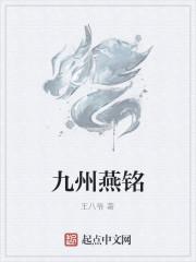 《九州燕铭》作者:王八爷