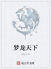 《梦龙天下》作者:李临兵