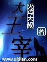 《大王宰》作者:火鸡大叔