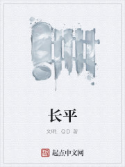《长平》作者:文明.QD