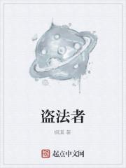 《盗法者》作者:枫溪