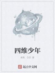 《四维少年》作者:易殷.QD