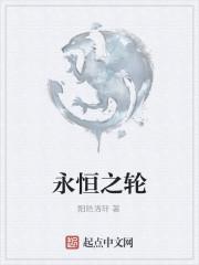 《永恒之轮》作者:阳皓洛轩