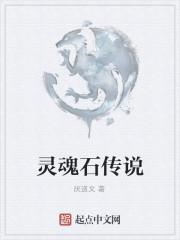 《灵魂石传说》作者:厌道文