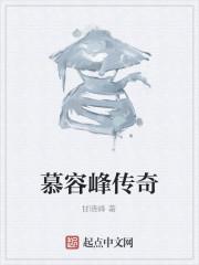 《慕容峰传奇》作者:甘晓峰
