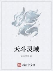 《天斗灵域》作者:紫蓝枫叶