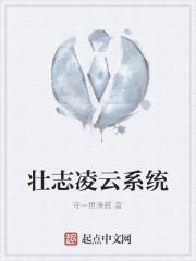 《壮志凌云系统》作者:守一世清贫