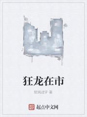《狂龙在市》作者:狂风战宇