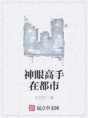 《透视高手在都市》作者:天空有门