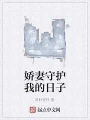 《娇妻守护我的日子》作者:落叶寻林