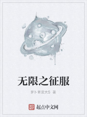《无限之征服》作者:萝卜青菜大S