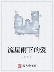 《流星雨下的爱》作者:JM安
