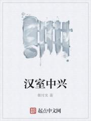 《汉室中兴》作者:撒时光