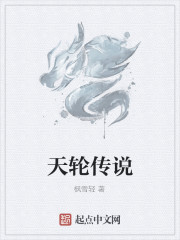 《天轮传说》作者:枫雪轻
