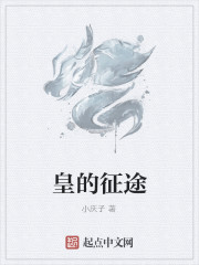 《皇的征途》作者:小庆子
