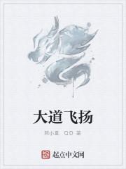 《大道飞扬》作者:熊小夏.QD
