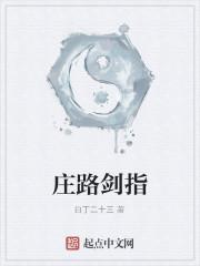《庄路剑指》作者:白丁二十三